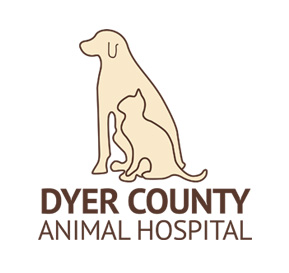 Dyer County Animal Hospital